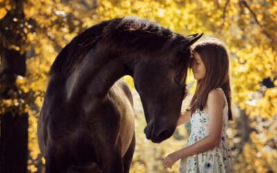 La communication Animale : un dialogue d'âme à âme